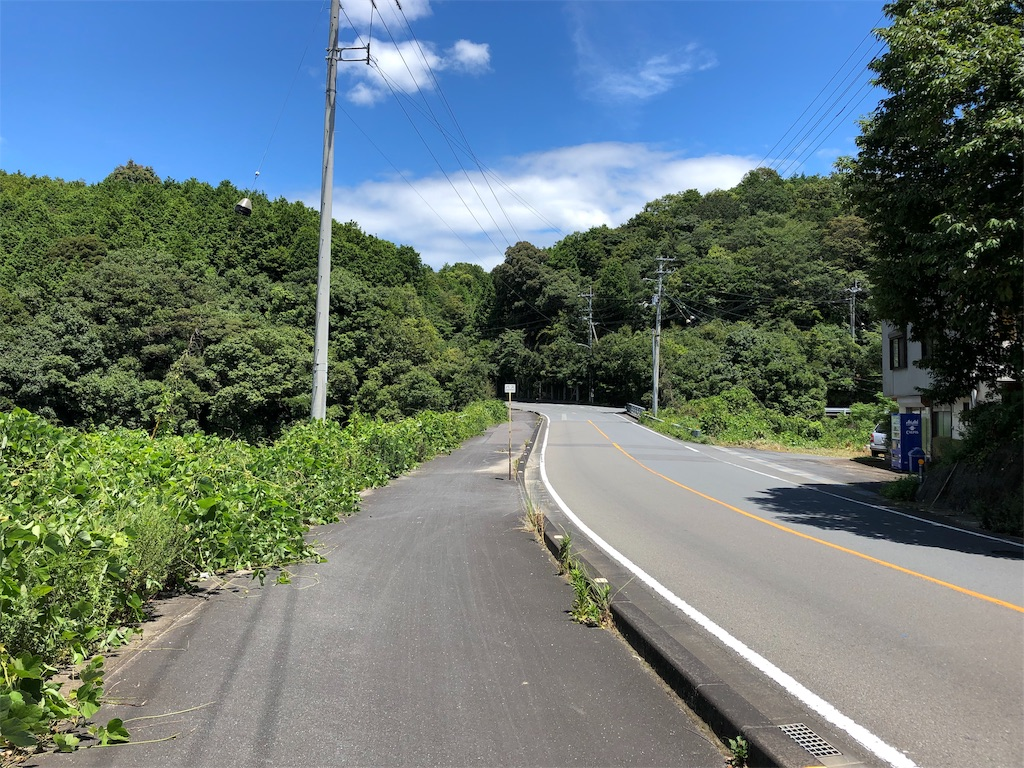 f:id:sikakebunko:20190806165201j:image