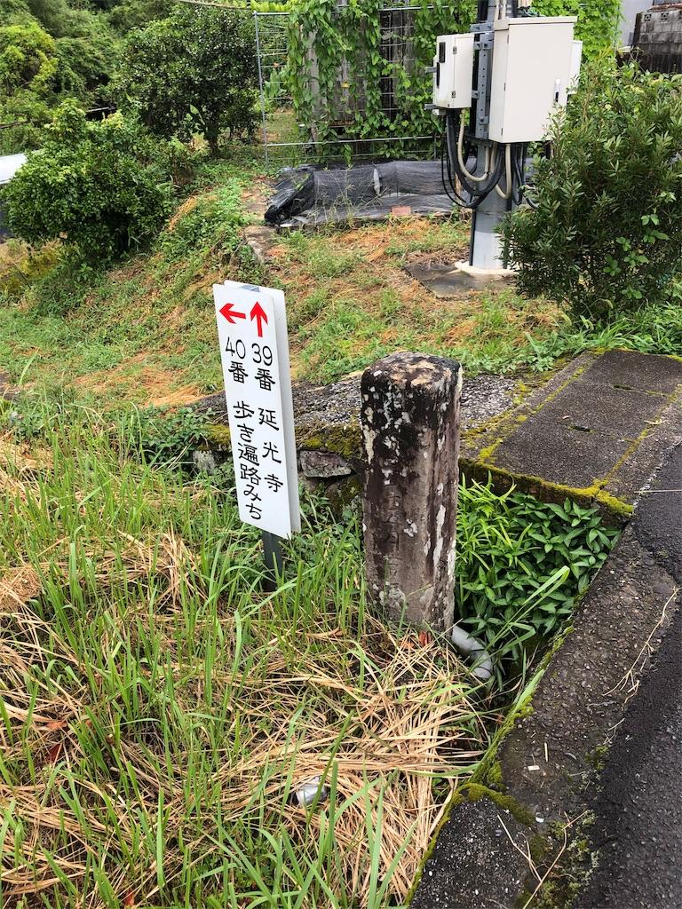 f:id:sikakebunko:20190806170725j:image