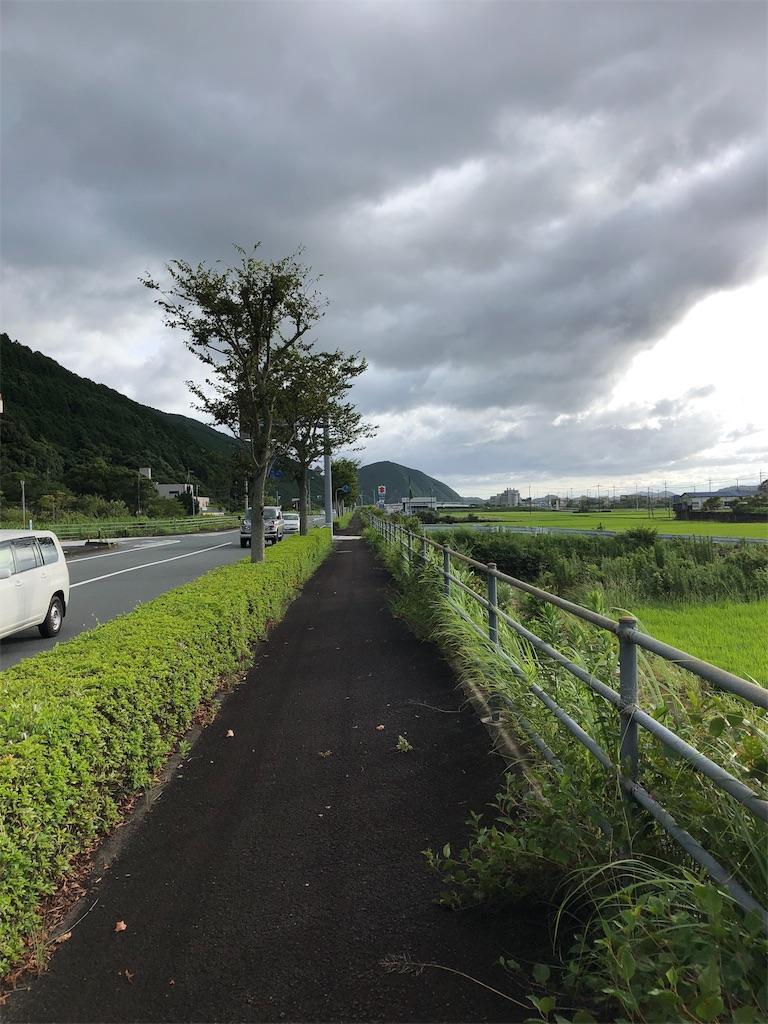 f:id:sikakebunko:20190806171048j:image
