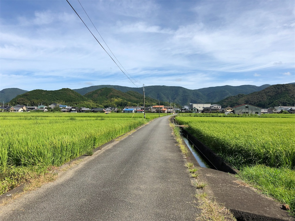 f:id:sikakebunko:20190810202538j:image