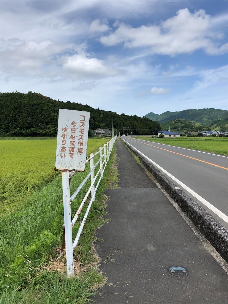 f:id:sikakebunko:20190810205843j:image