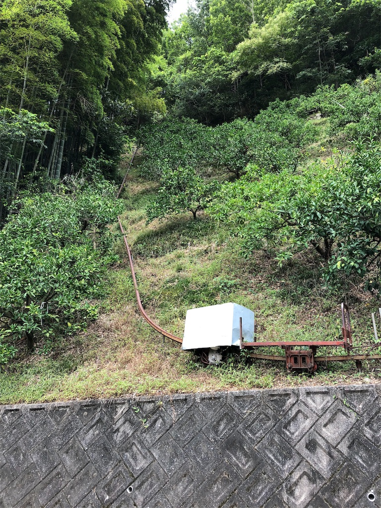 f:id:sikakebunko:20190810212750j:image