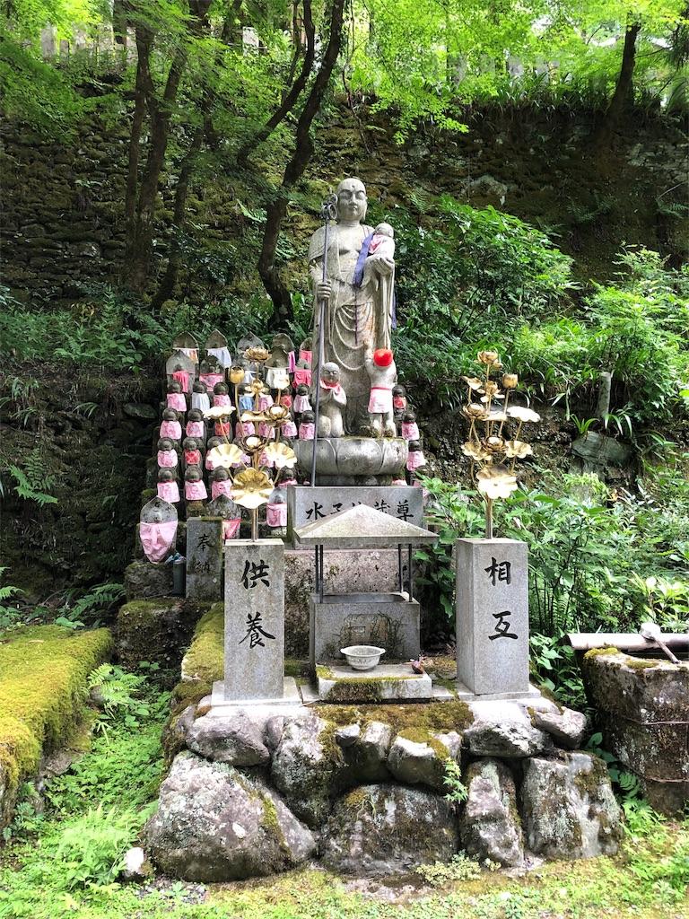 f:id:sikakebunko:20190815085619j:image