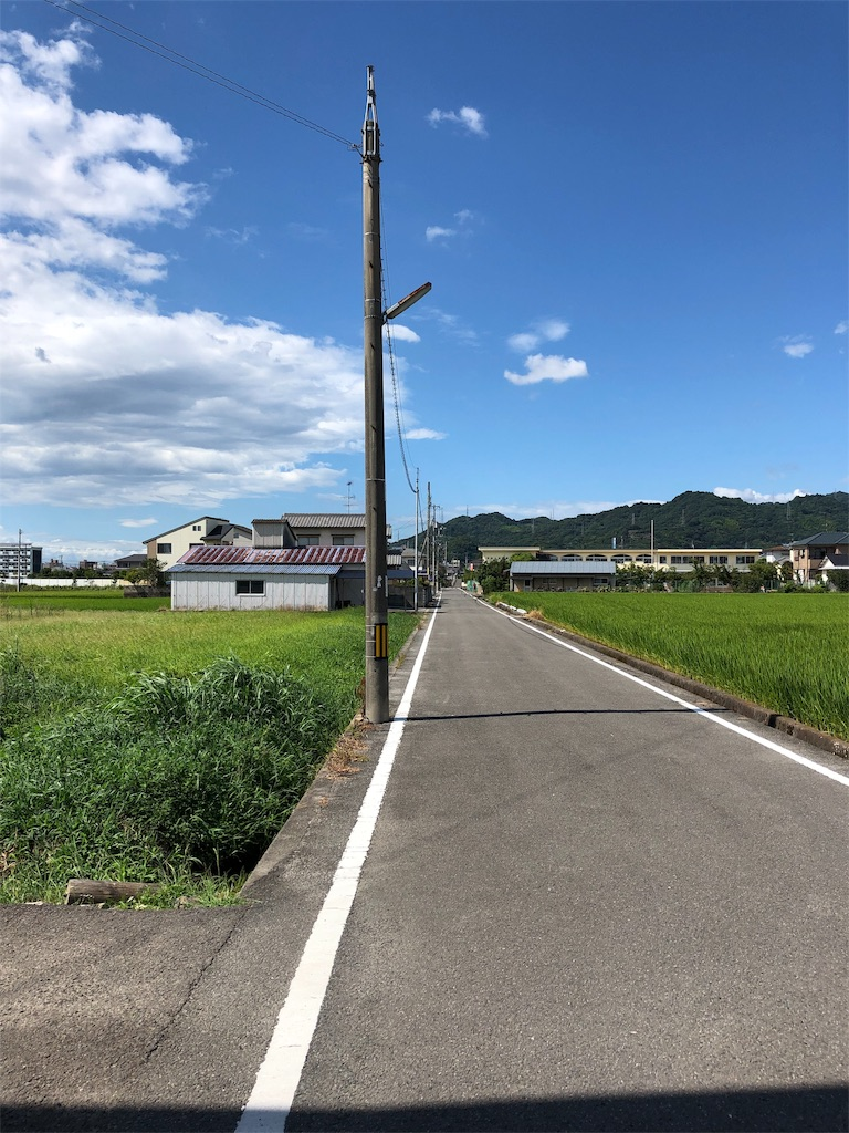 f:id:sikakebunko:20190815212309j:image