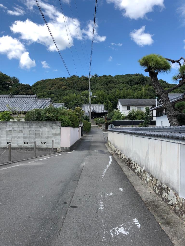 f:id:sikakebunko:20190815212322j:image