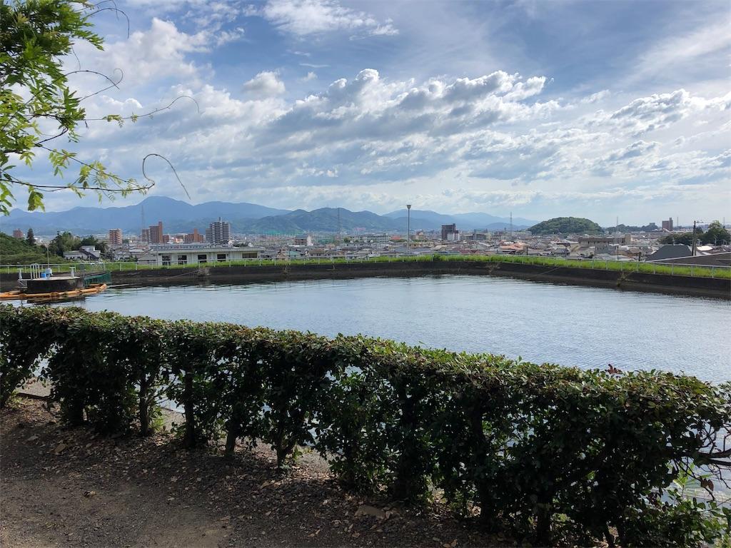 f:id:sikakebunko:20190815214533j:image