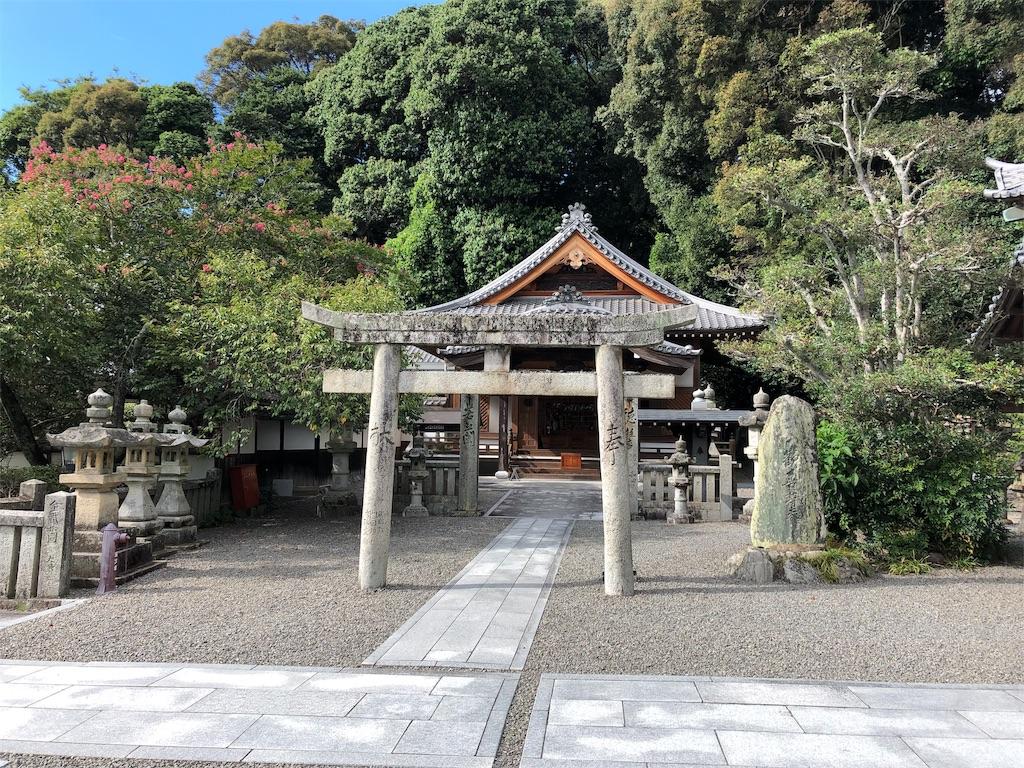 f:id:sikakebunko:20190815214618j:image
