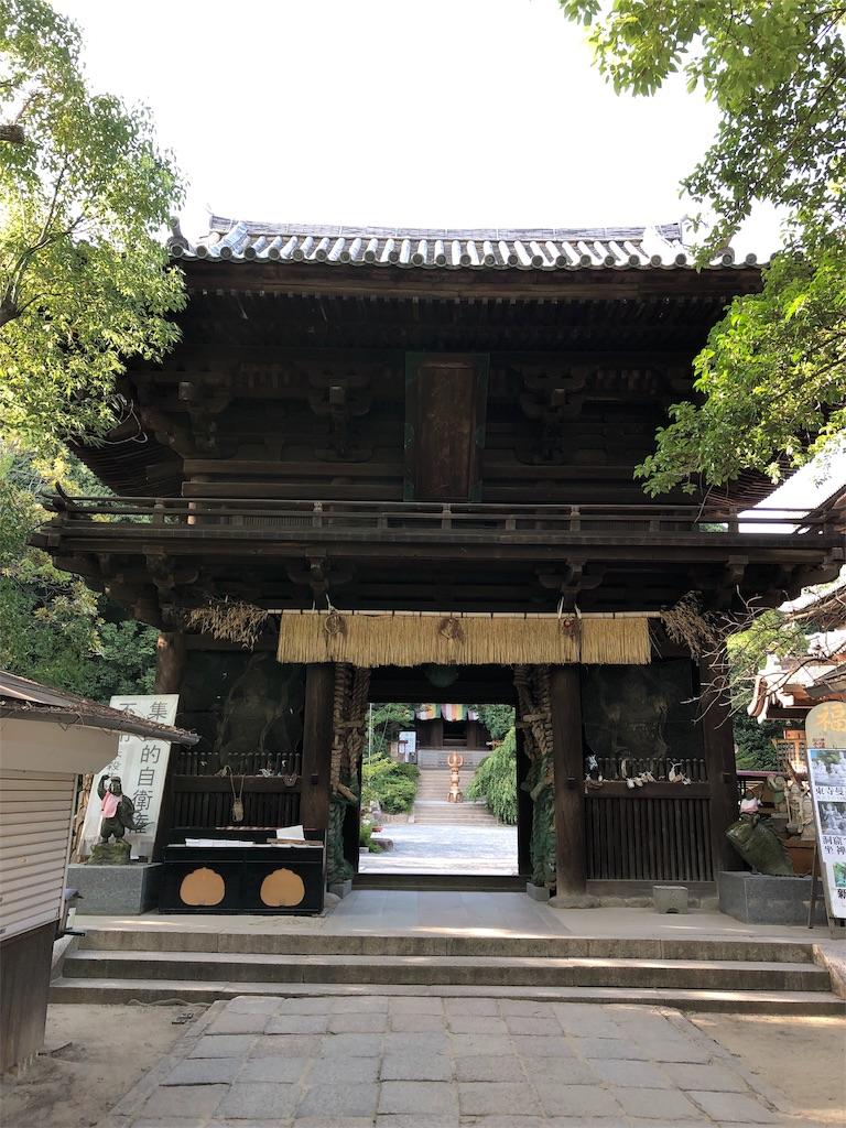f:id:sikakebunko:20190815215609j:image