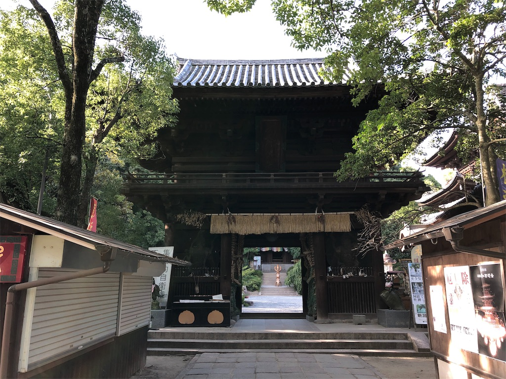 f:id:sikakebunko:20190815215614j:image