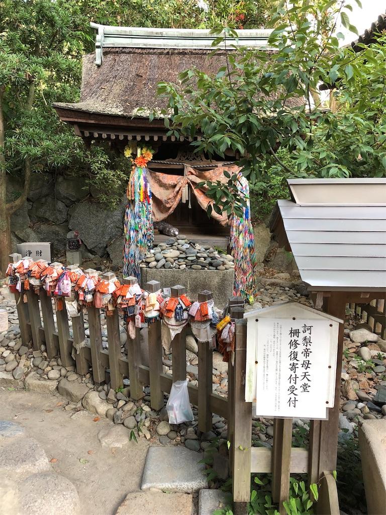 f:id:sikakebunko:20190815221049j:image