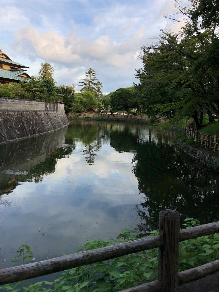 f:id:sikakebunko:20190815225109j:image