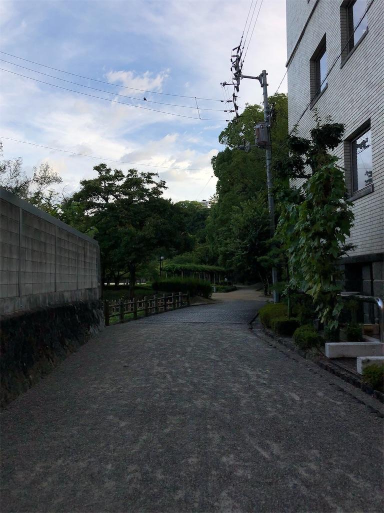 f:id:sikakebunko:20190815225156j:image
