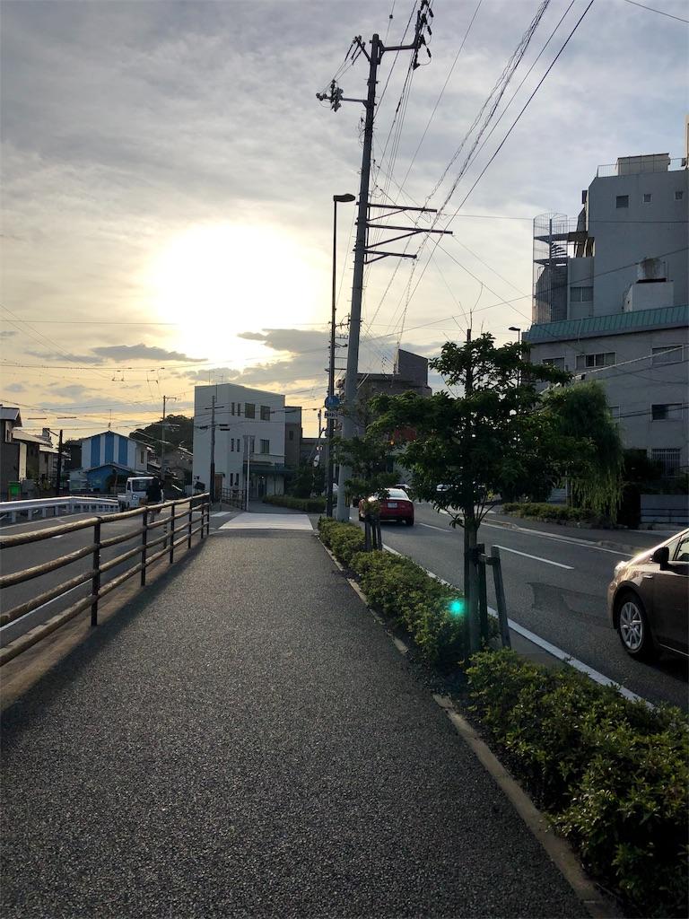 f:id:sikakebunko:20190815225229j:image