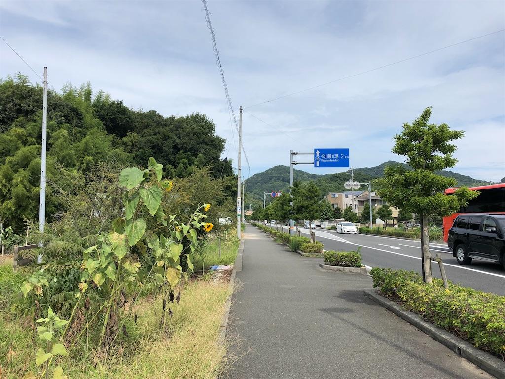 f:id:sikakebunko:20190817001638j:image