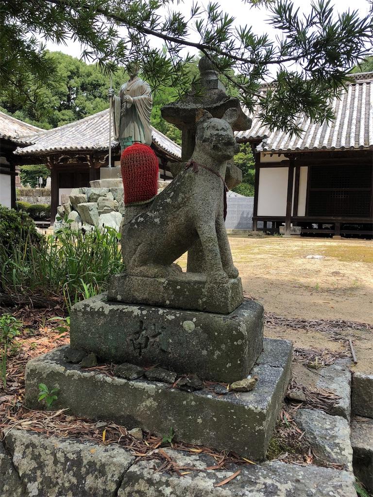 f:id:sikakebunko:20190818164641j:image
