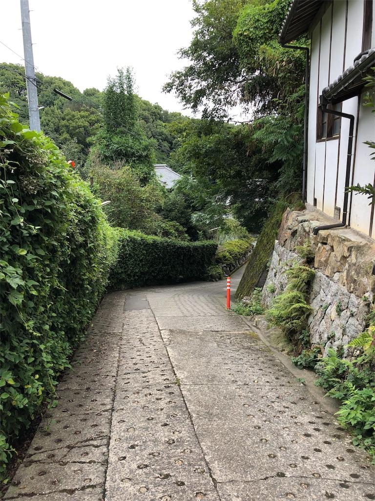 f:id:sikakebunko:20190820105943j:image