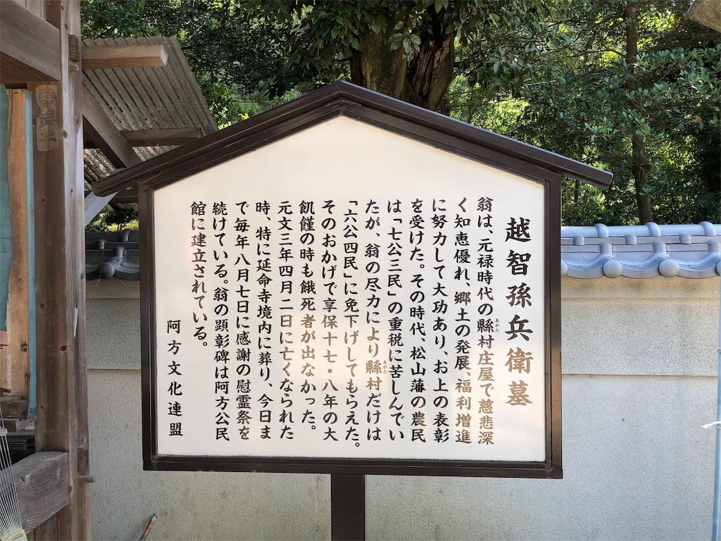f:id:sikakebunko:20190821210227j:image