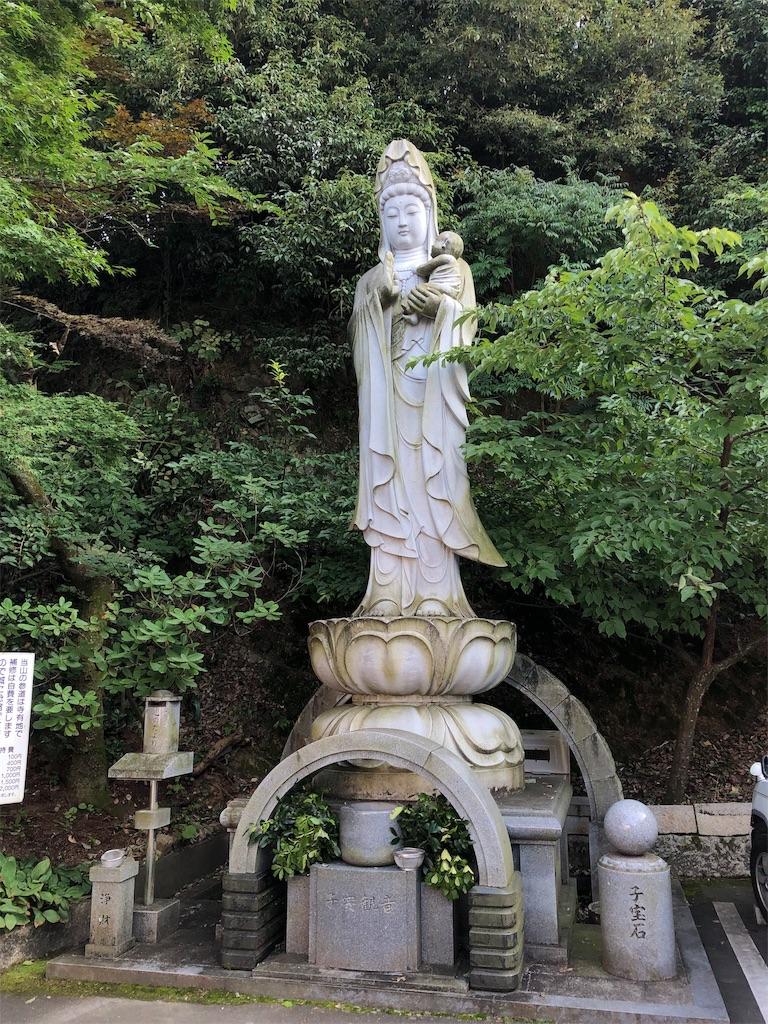 f:id:sikakebunko:20190824192358j:image