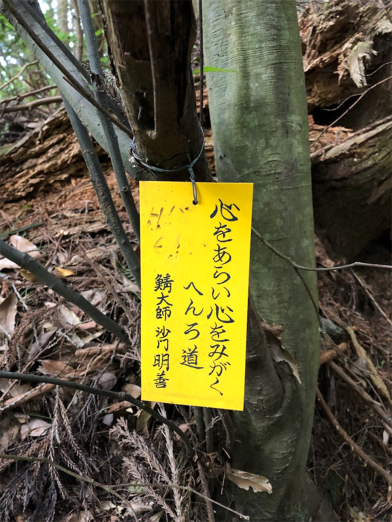 f:id:sikakebunko:20190825203302j:image