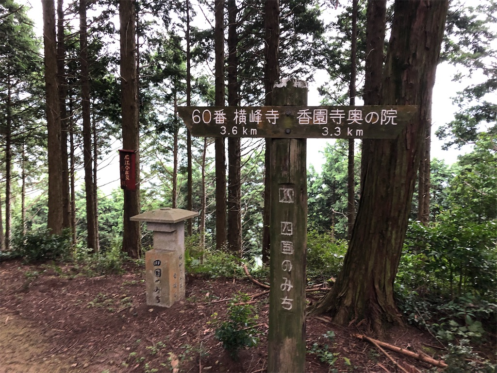f:id:sikakebunko:20190825203614j:image