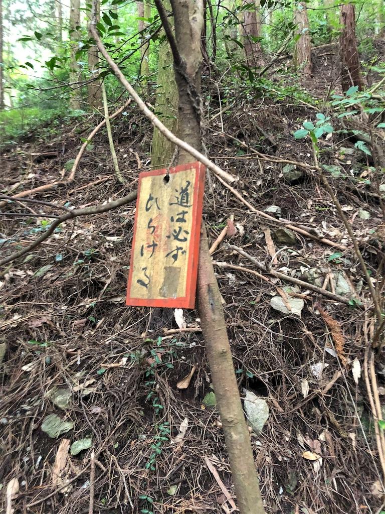 f:id:sikakebunko:20190825203744j:image