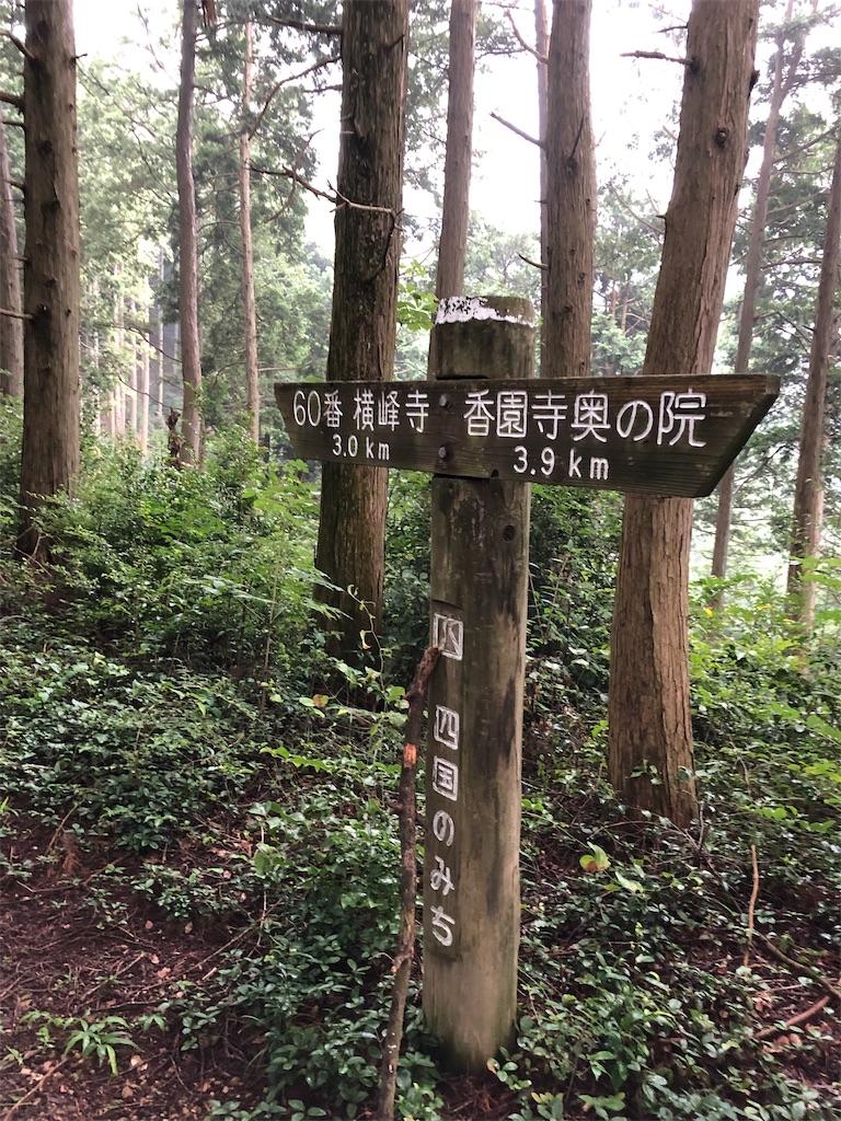 f:id:sikakebunko:20190825203844j:image