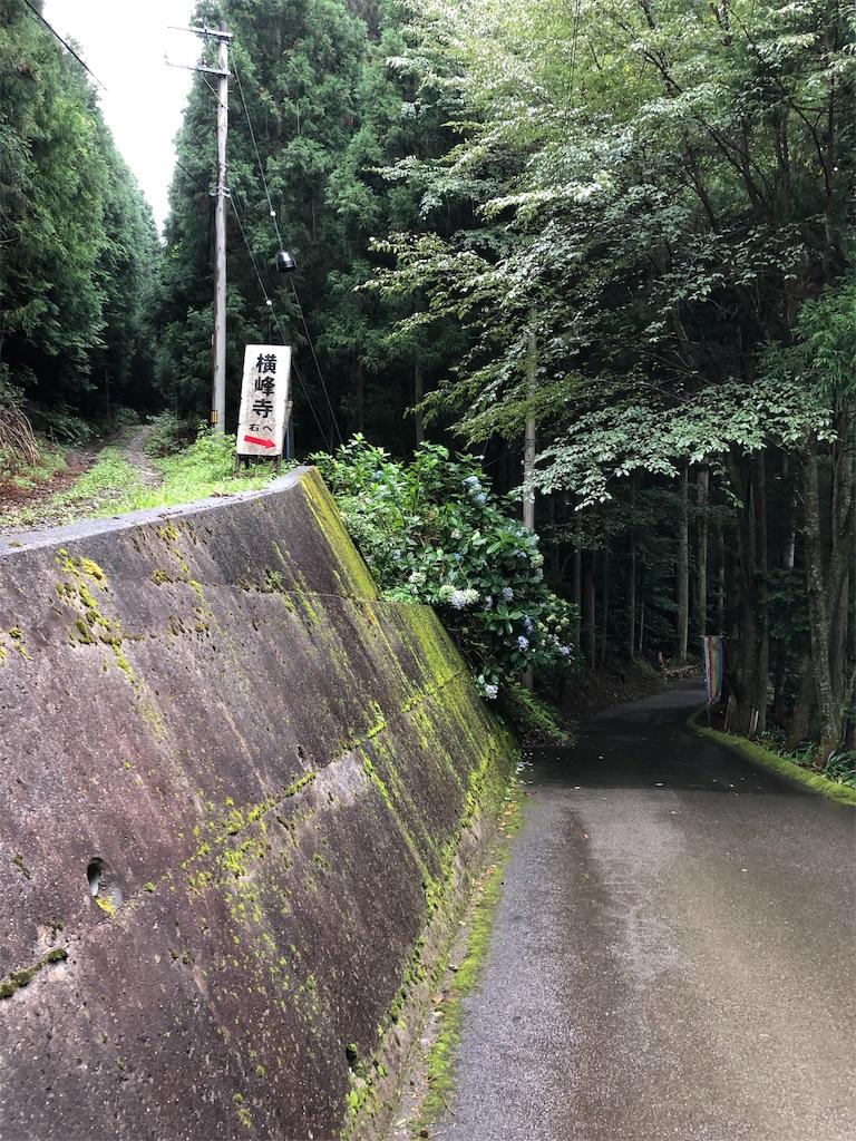 f:id:sikakebunko:20190825204025j:image