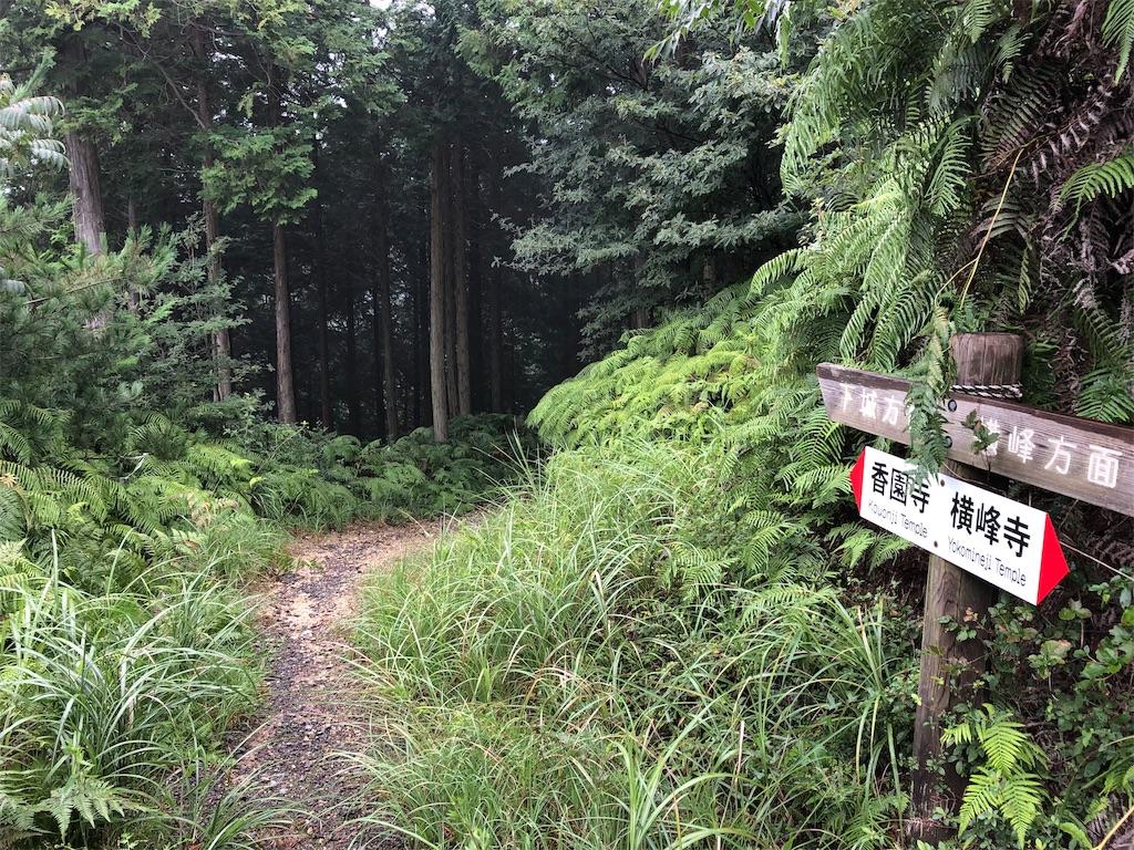 f:id:sikakebunko:20190825211353j:image