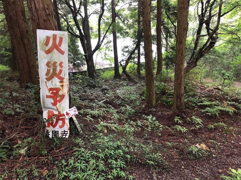 f:id:sikakebunko:20190825211525j:image