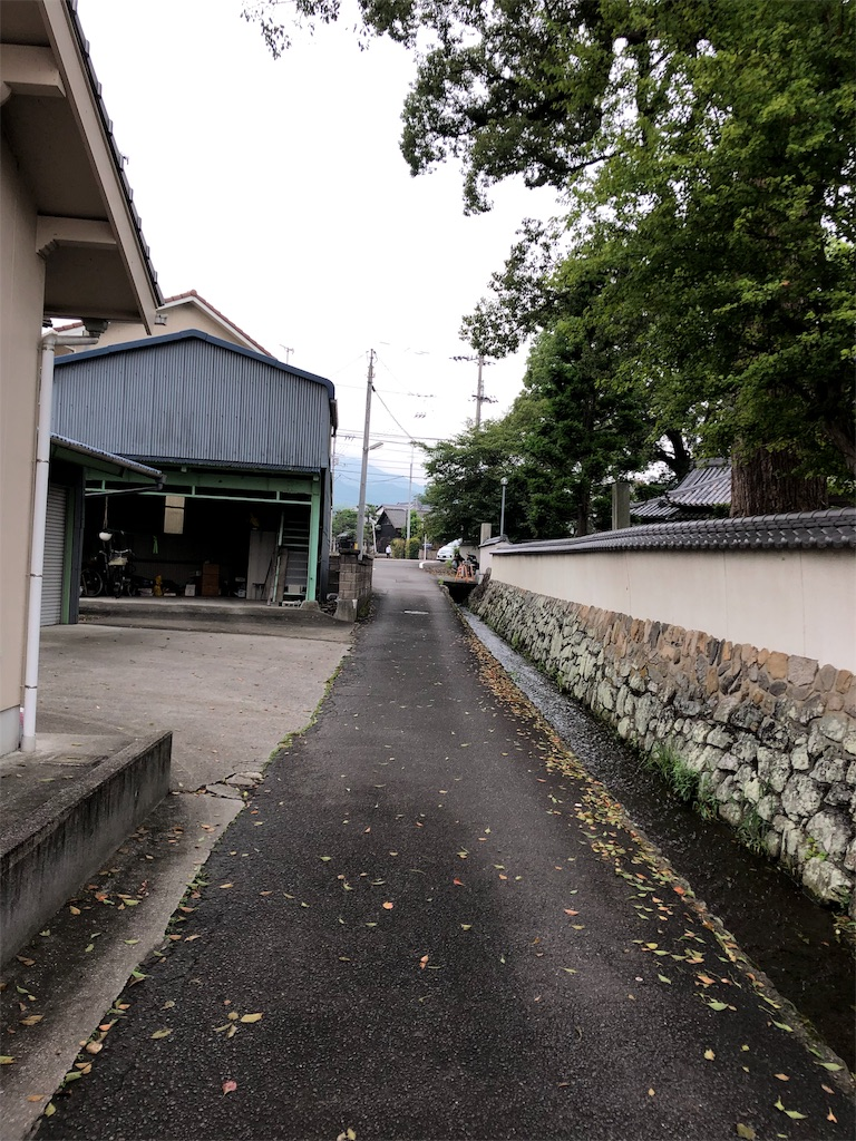 f:id:sikakebunko:20190825214047j:image