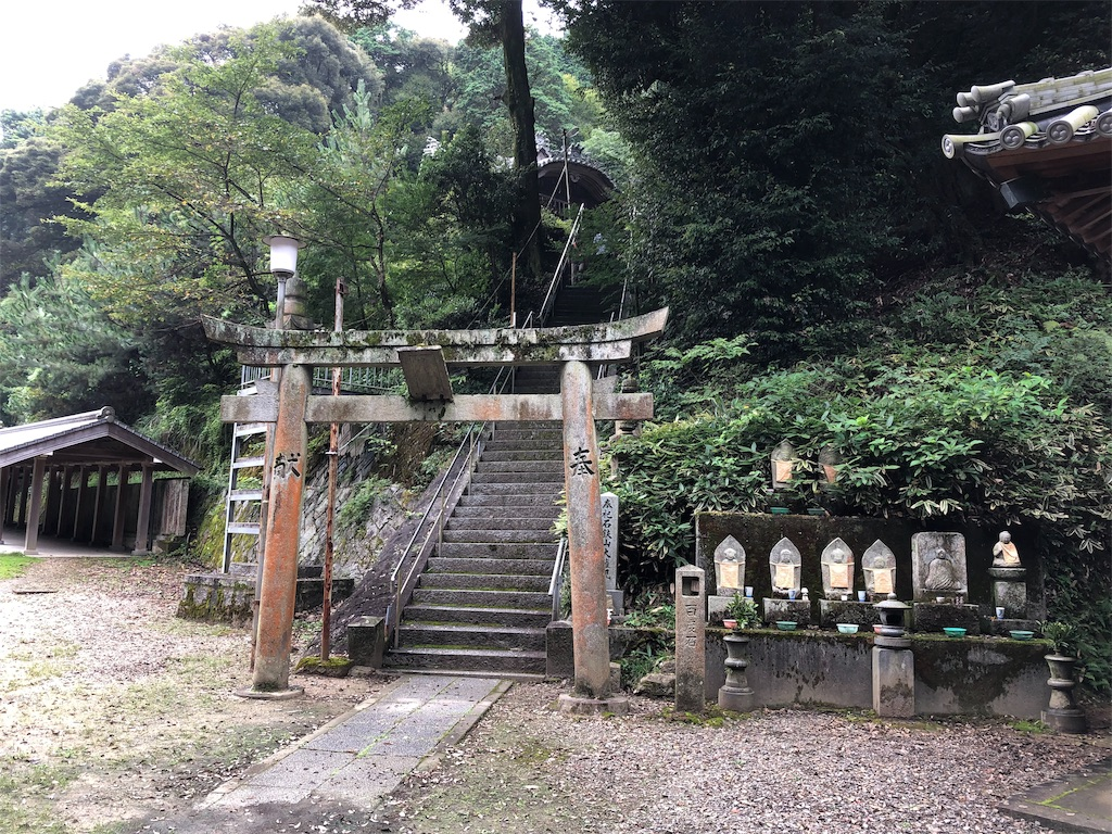 f:id:sikakebunko:20190826155658j:image