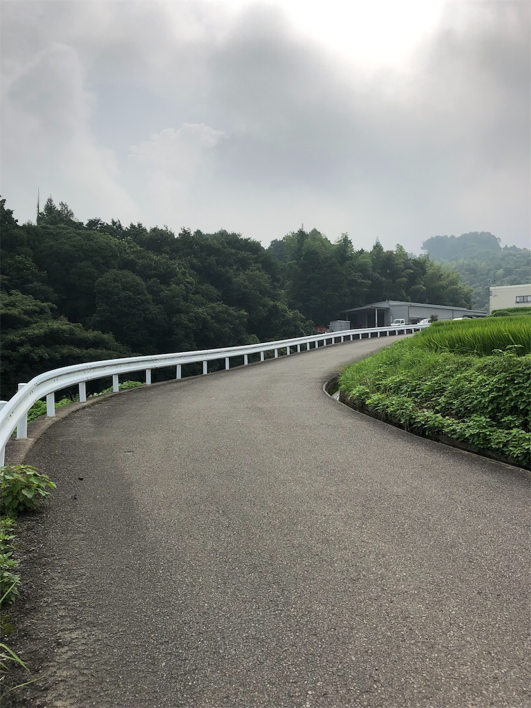 f:id:sikakebunko:20190901124051j:image