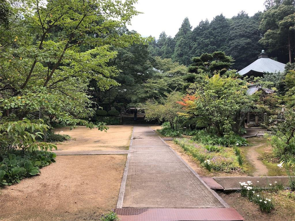 f:id:sikakebunko:20190901124257j:image