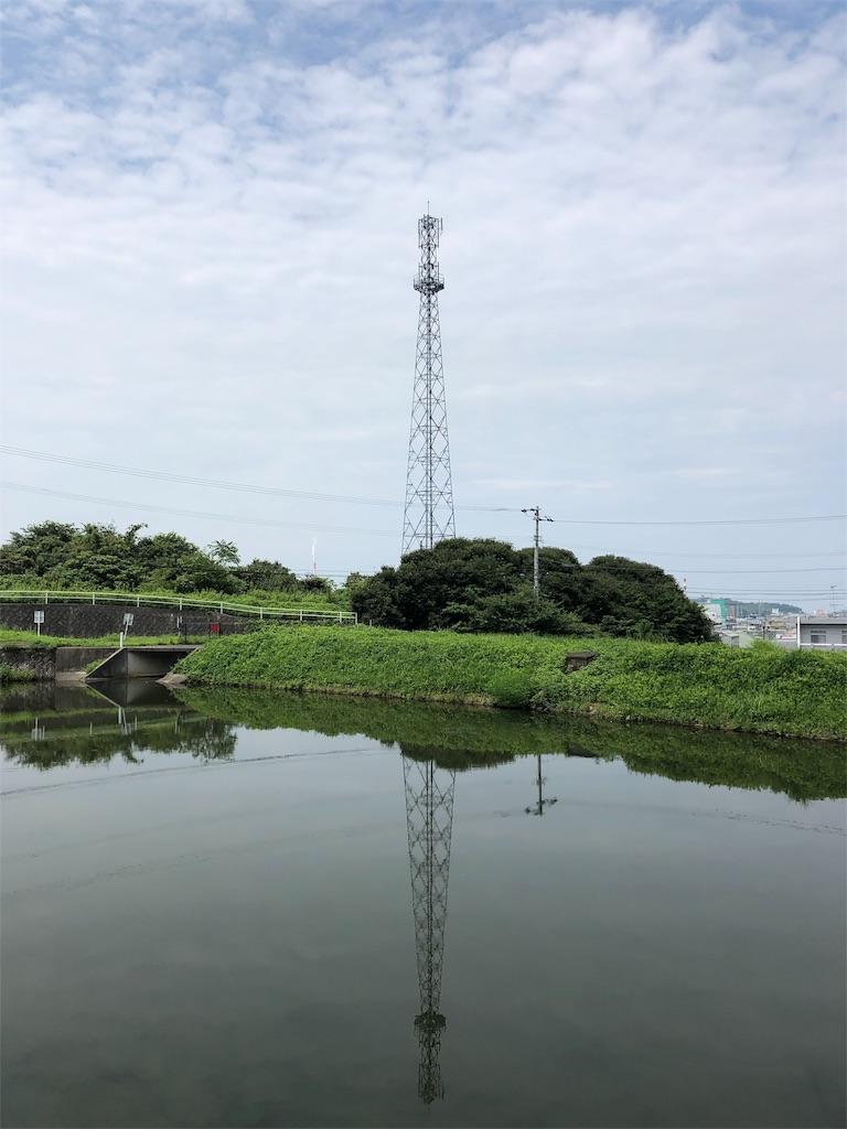 f:id:sikakebunko:20190901124459j:image