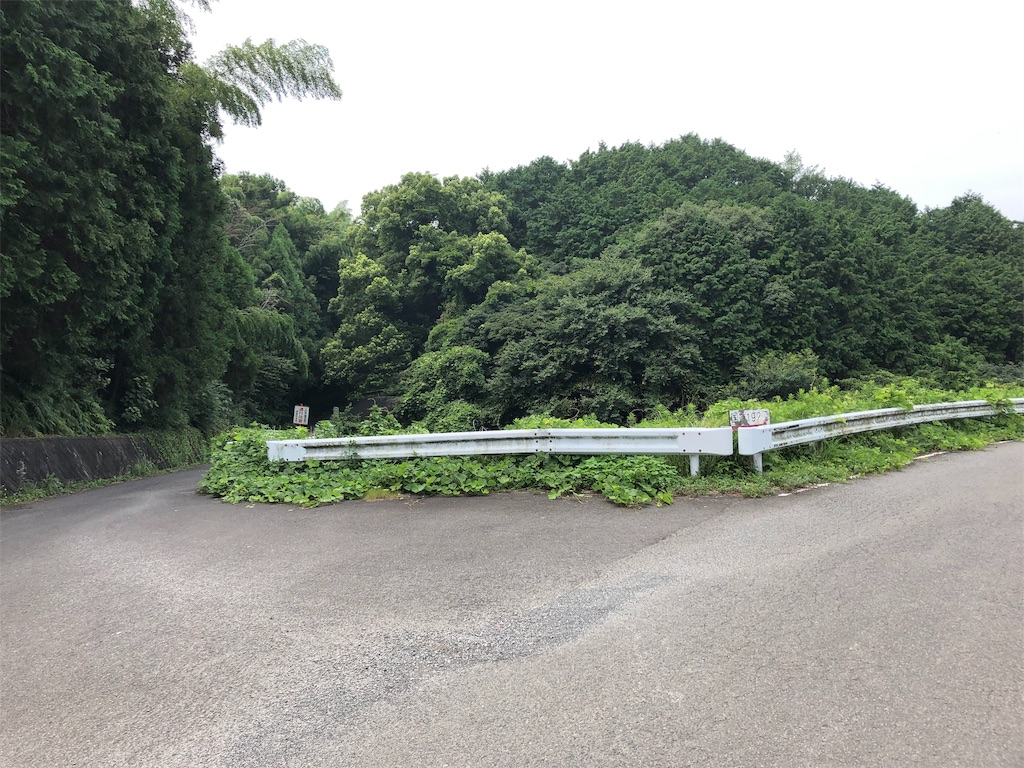 f:id:sikakebunko:20190901124824j:image