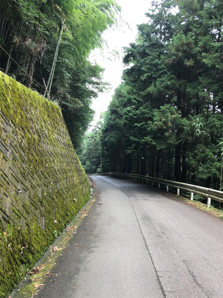 f:id:sikakebunko:20190901124937j:image