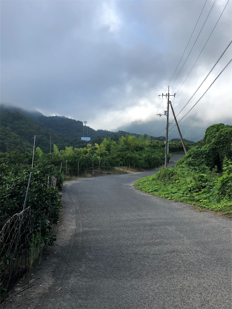 f:id:sikakebunko:20190902191408j:image