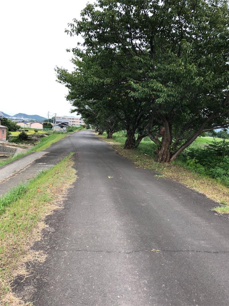 f:id:sikakebunko:20190902195124j:image