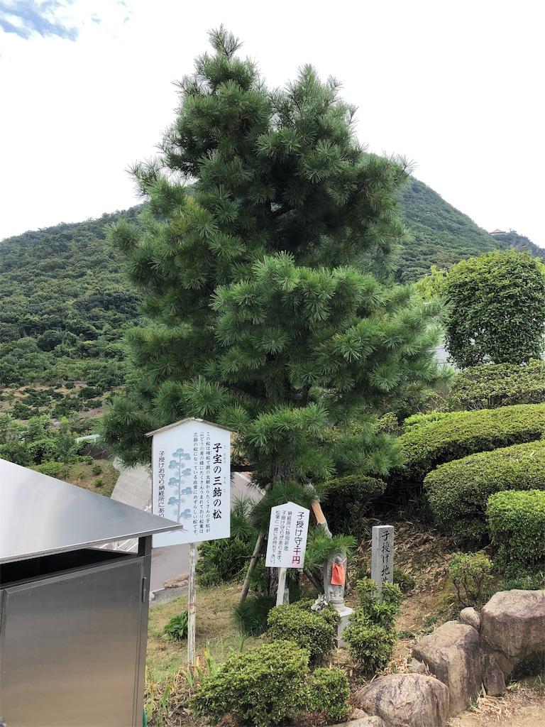f:id:sikakebunko:20190905182522j:image