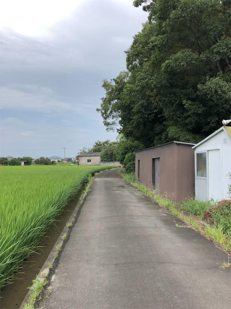 f:id:sikakebunko:20190905183002j:image