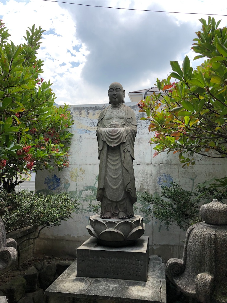 f:id:sikakebunko:20190910124748j:image