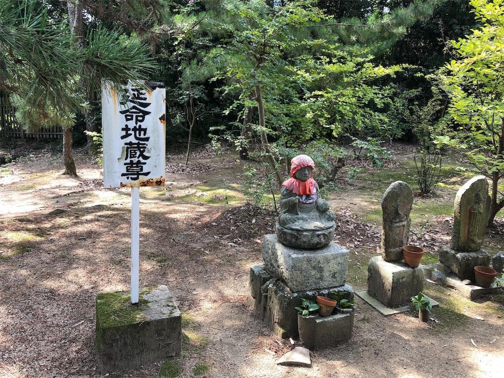 f:id:sikakebunko:20190910131247j:image