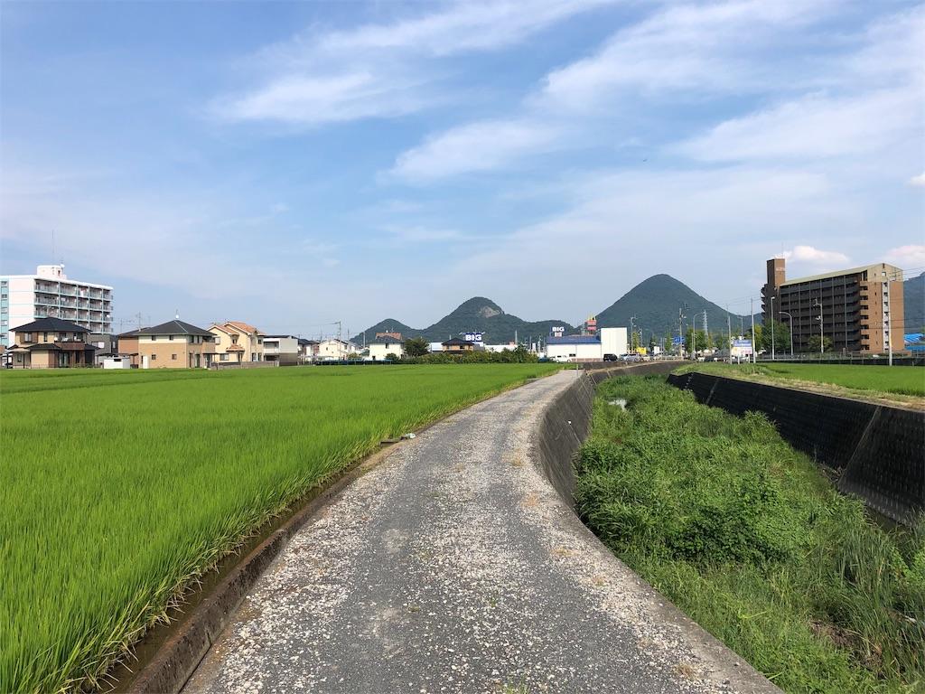 f:id:sikakebunko:20190910131539j:image