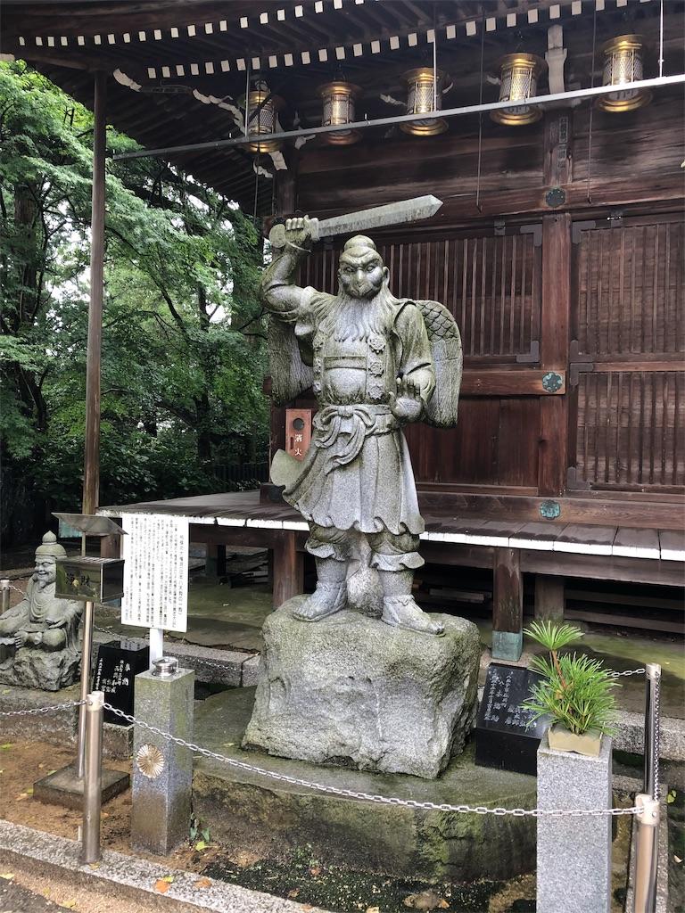 f:id:sikakebunko:20190911112418j:image