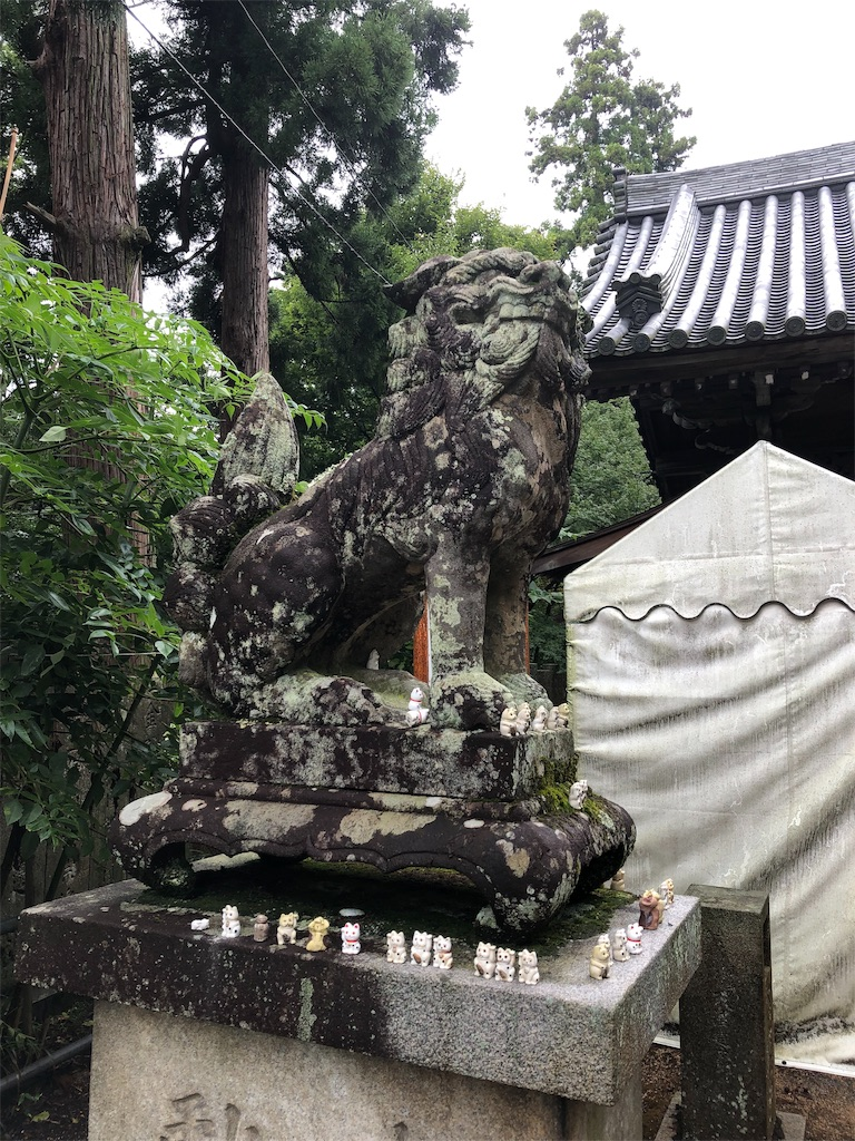 f:id:sikakebunko:20190911112544j:image