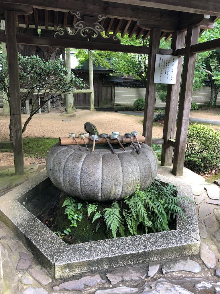 f:id:sikakebunko:20190911115625j:image