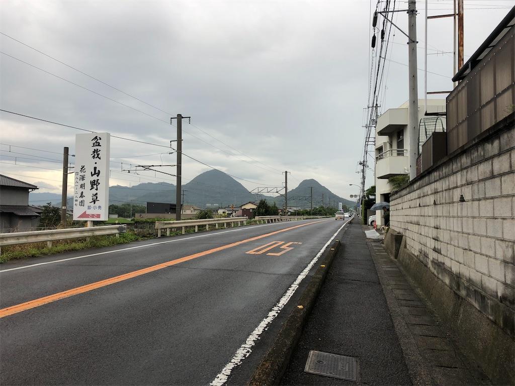 f:id:sikakebunko:20190911115803j:image