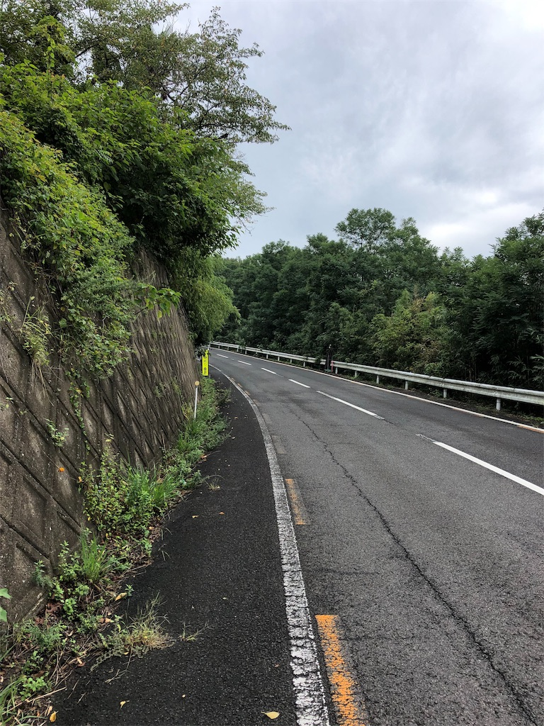 f:id:sikakebunko:20190912121354j:image