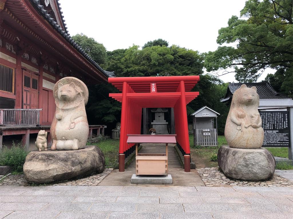 f:id:sikakebunko:20190912121516j:image