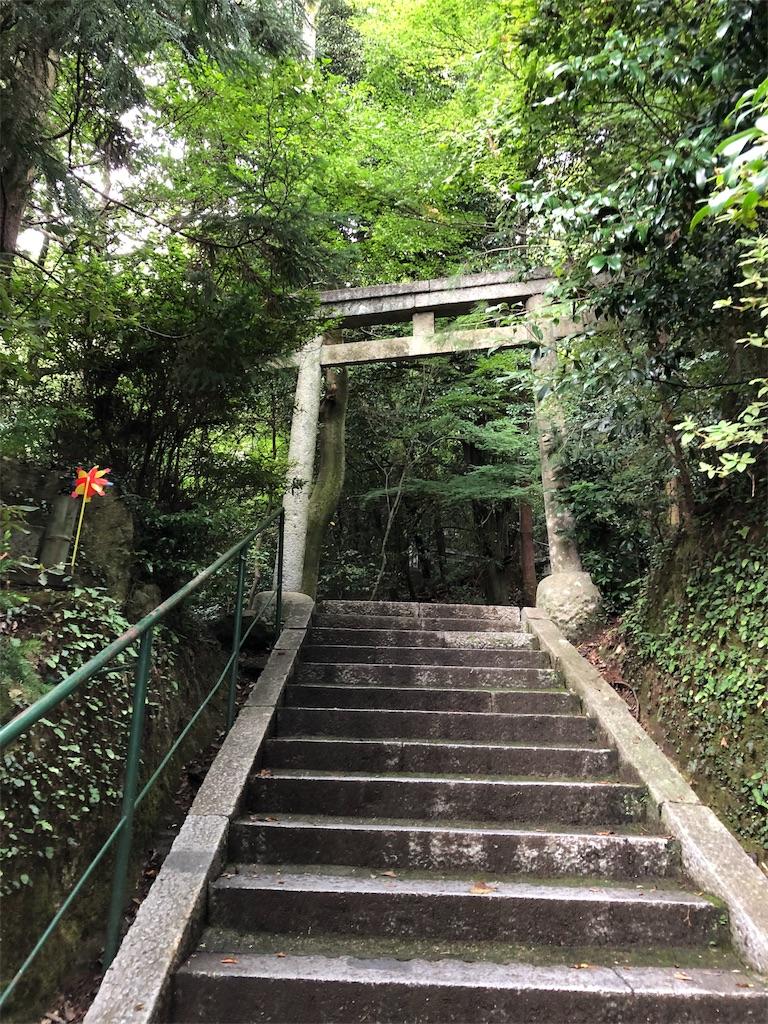 f:id:sikakebunko:20190912135253j:image